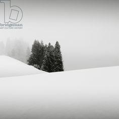 Snowytales Oasis, Bavaria, Germany, 2013 (b/w photo) / Photo © Ronny Behnert / Bridgeman Images