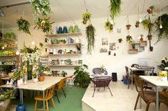 Cafe / plant store