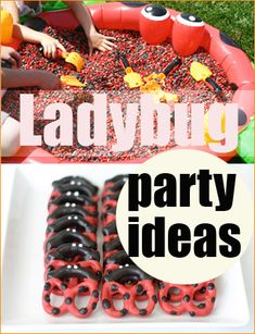 Ladybug Party Ideas.  Cute party ideas for your little bug.  Fun games, ladybug food and red bug bags.