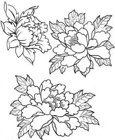 Awesome Most Popular Embroidery Patterns Ideas. Most Popular Embroidery Patterns Ideas. Flower Tattoo Designs, Flower Tattoos, Tattoo Drawings, Art Drawings, Japanese Flowers, Japanese Flower Tattoo, Colouring Pages, Fabric Painting, Embroidery Patterns