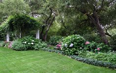What to Plant with Hydrangeas Traditional Style for Landscape with Lawn by Donna Lynn - Landscape Designer in Santa Barbara