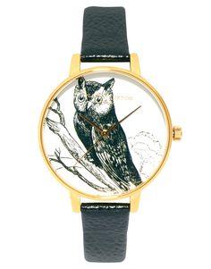 Owl! Love it!
