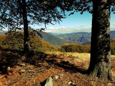 Carpathian Wayfarer outdoor holidays – Discover places of unspoilt beauty through an unforgettable outdoor experience , enjoy amazing tailored trips and personalised holidays in the Carpathian mountains