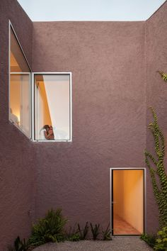 TheThree Courtyard Houseis located in a small village 25km south of Lisbon, within a natural park whose name Azeitao, derives from Arabic, Az-zeitum – the olive grove.