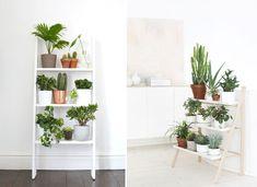 Portal, Beautiful Places, Decorations, Plants, Decoration, Plant, Decor, Planting, Planets
