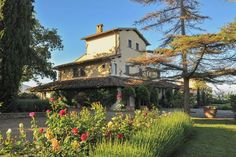 A wonderfully beautiful and well kept garden surrounds the villa.