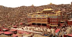 Among the rows of tiny houses sits the intellectual focal point of the village: the Seda Larung Wuming Tibetan Buddhist Institute, which is the the largest Tibetan Buddhist school in the world. Seda (known to the Tibetans as Serthar) is a county of the Sichuan Province in China.  The school firs