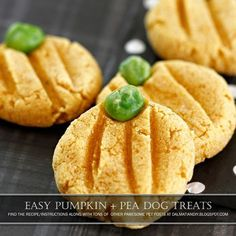 Dalmatian Diy Recipe Easy Pumpkin Halloween Dog Treats - Using A Pumpkin Squash Based Baby Food Or Another Naturally Orange Food Such As Sweet Potato Kumara Gives These Treats A Natural Orange Colour Baby Food Is A Quick And Easy Way To Add Delicious Nu # Puppy Treats, Diy Dog Treats, Homemade Dog Treats, Healthy Dog Treats, Gourmet Dog Treats, Puppy Food, Pet Food, Dog Biscuit Recipes, Dog Treat Recipes