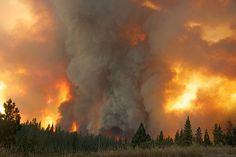 Inferno - Yosemite Rim Fire