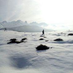 En algún lugar en la nieve