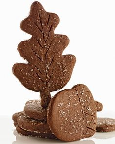 Chocolate-Ginger Leaves and Acorns