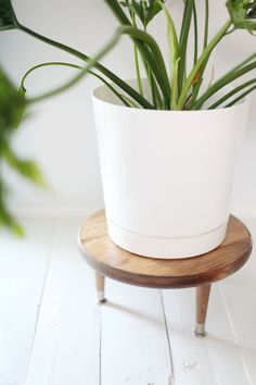 Midcentury-Style Plant Stand Make this little wooden plant stand to add height to your larger houseplants.Make this little wooden plant stand to add height to your larger houseplants. Modern Plant Stand, Diy Plant Stand, Modern Planters, Wood Planters, Planter Ideas, Potted Plants, Indoor Plants, Indoor Outdoor, Wooden Plant Stands