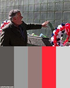 Vietnam Veterans: Refining Their Legacy Color Scheme