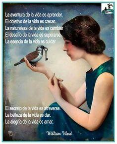 # Frases de autor..#Vientos del alma.#
