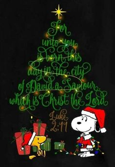 Snoopy and Woodstock on Christmas Eve: Have a Merry Christmas and a Blessed New Year. — John and Gail Kremer For unto you is born this day in the city of David a savior which is Christ the Lord. Merry Christmas Quotes, Christmas Art, Christmas Holidays, Vintage Merry Christmas, Merry Christmas Pictures, Merry Christmas Wallpaper, Christmas Jokes, Christmas Gifts, Pallet Christmas