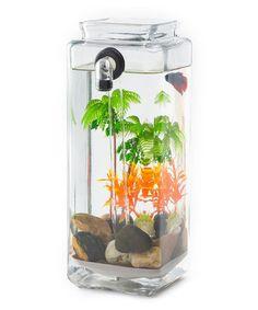 Look at this #zulilyfind! Self-Cleaning Fish Tank Set by Bottle Pets #zulilyfinds
