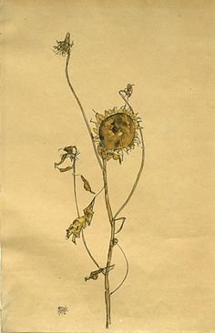 """Egon Schiele. Wilted Sunflower. 1912. Gouache and pencil on paper. Signed and dated, lower left. 17 3/4"""" x 11 3/4"""" (45 x 29.9 cm). Kallir D. 1212. Private collection, courtesy Galerie St. Etienne, NY."""
