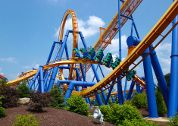 Dorney Park has roller coasters that will make you scream with excitement! Book an overnight at www.dorneydeals.com to get the most out of your stay!
