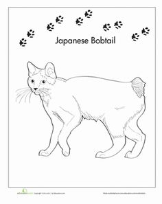 japanese bobtail coloring page