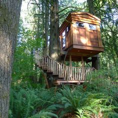 Treehouse Point! Rent up to 5 treehouses for your events...or my future events.   (Pictured: The Bonbibi Treehouse)