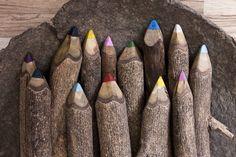 Lápis de galho de arvore