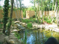 swimming pools that look like ponds | This natural swimming pool complete with Japanese tea-hut was built by ...
