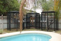 aviaries - and can we get the pool too?