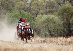 Queensland Bucket List | 18. Ride in one of the last Cobb & Co. horse-drawn stagecoaches in Longreach.
