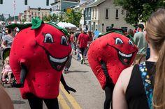 Troy Strawberry Festival 2020.23 Best Strawberry Festivals Images Strawberry Pie