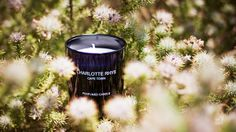 Scented candle in black glass by Charlotte Rhys