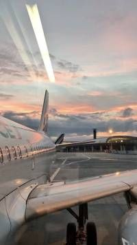 Avião com o pôr-do-sol Wallpapers Images Esthétiques, Google Images, Photos Voyages, Photo Wall Collage, Travel Aesthetic, Adventure Aesthetic, Travel Pictures, Travel Photos, Music Pictures
