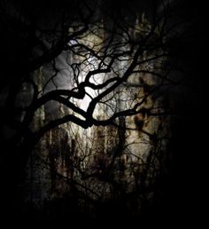 dark places - Buscar con Google