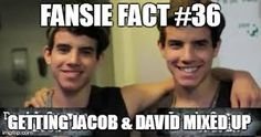 Image result for fansie facts