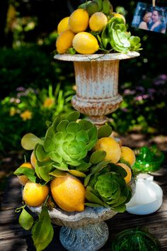 Lemons & succulents.