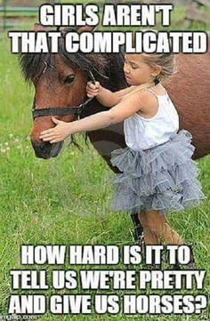 Farm Animals Kids Toys - Horses Funny - Funny Horse Meme - - Girls aren't complicated. How hard is it to tell us we're pretty & give us horses? The post Farm Animals Kids Toys appeared first on Gag Dad. Funny Horse Memes, Funny Horses, Cute Horses, Pretty Horses, Horse Love, Beautiful Horses, Funny Animals, Cute Animals, Horse Humor