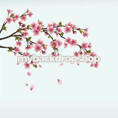 3ft x 3ft Cherry Blossom Branch Photography Backdrop - Tree Limb Photo Backdrop - Flowers - Vinyl - Item 1595
