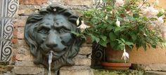 #rose #Back #Yard  #Patio #hiding_garden #secret_garden #vienna_roof_garden #vienna #Gartenspaß #spring work in progress Patio, Rose, Animals, Lawn And Garden, Pink, Animales, Animaux, Animal, Roses