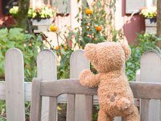 おいしそうなトマト♪|東京ディズニーリゾート