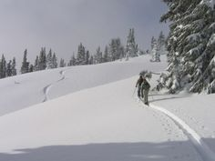 the 1330 best the ski guru http www the ski guru com images on rh pinterest com