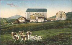 Luční bouda Landscape, Postcards, Painting, Colorful, Photos, Roots, Scenery, Pictures, Painting Art