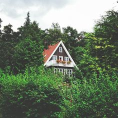romantic house #romantic #house #travel #traveling #europe #poland #sopot #forest