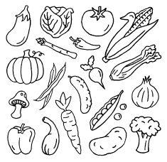 Vegetable Doodles vector art illustration