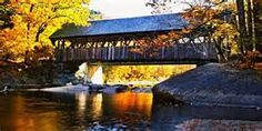 Beautiful Bridges in America - Bing images