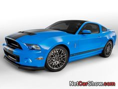 2013 Mustang Shelby GT500!!
