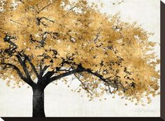 Golden Blossoms Stretched Canvas Print by Kate Bennett at AllPosters.com