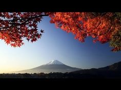 ▶ 3 HOURS of the Best Traditional Japanese Music ! - Relaxing Music - Meditation and Zen Music - YouTube