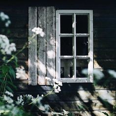 Country Life, Country Living, Farm Cottage, Practical Magic, Chiaroscuro, Green Garden, Curb Appeal, Ladder Decor, Facade