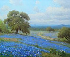 Whistle Pik Galleries - Porfirio Salinas Texas Bluebonnets