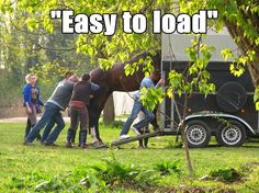 "I've been horse shopping and it's been super amusing the read the descriptions I've found... ""Easy to load"" ... with 17 people, a heavy amount of sedation, and five hours of struggling. Just be honest, people!"