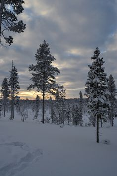 Lapland - The White Land...